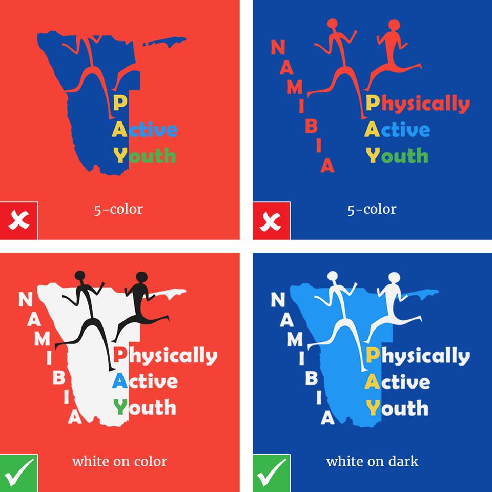 p.a.y.-logo-color-background